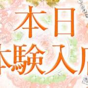 葉月【ハヅキ】|ピンクコレクション京都 - 河原町・木屋町(洛中)風俗