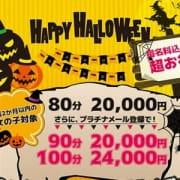 「実は【新人収穫祭】は超お得!新人狙いはこちらをチェック!!」10/19(金) 15:02 | ドンピシャフル~ちゅのお得なニュース