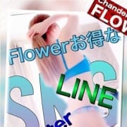 SNSでも横須賀エリアNo1☆ Flower(フラワー)