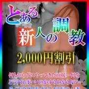 「とある新人の調教!!2000円割引!!貴方色に染めてあげて♪」04/22(日) 18:06 | とある人妻のデリヘルのお得なニュース