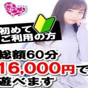 「「ご新規様総額3000円OFF」お得に遊ぶコツとは?」03/09(火) 15:02 | シーパラダイスのお得なニュース