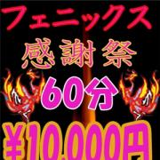 お昼間限定コース☆|人妻専門店 クラブフェニックス - 宮崎市近郊風俗