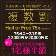 複数割 -Half or Free-
