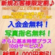 「【♪出勤情報♪】本日も12:00からOPENしております!!」08/22(水) 15:10 | PEACH PIE-ピーチパイ-のお得なニュース