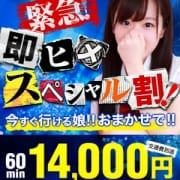 「緊急★『即ヒメSP割り』」08/06(月) 15:24 | クラスメイト 品川校のお得なニュース