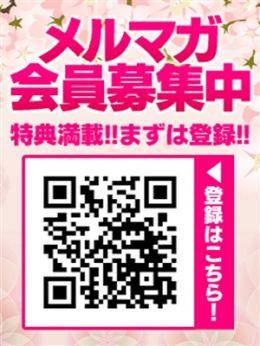 メルマガ会員募集中 | 五十路マダム神戸店(カサブランカグループ) - 神戸・三宮風俗