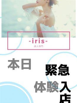 TUKURI(ツクリ) | 『iris‐アイリス‐』素人専門学生から人妻OLまでetc - 福山風俗