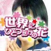 「◆只今!!のりかえ割実施中!!!◆」01/12(金) 10:25 | 世界にひとつだけの花のお得なニュース
