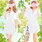 「森の看護婦さん」04/23(月) 18:38   アニマルパラダイスのお得なニュース