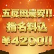 「五反田最安値!!破格の指名料込¥4200!!」01/15(火) 12:00   アニマルパラダイスのお得なニュース