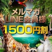 「メルマガ会員、LINE会員は1500円オフ!!」06/04(木) 15:54 | アニマルパラダイスのお得なニュース