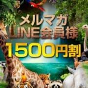 「メルマガ会員、LINE会員は1500円オフ!!」10/26(月) 23:24 | アニマルパラダイスのお得なニュース