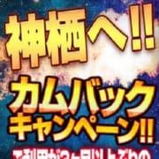 「神栖へ!カムバックキャンペーン!!」02/17(日) 02:56 | 神栖人妻花壇のお得なニュース
