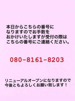 リニューアルオープン   茨城水戸ちゃんこ - 水戸風俗