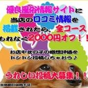 「最大4,000円割引!!口コミ+メルマガ登録で茨城県最大の割引き価格に♪」08/10(月) 19:30 | 茨城水戸ちゃんこのお得なニュース