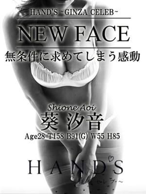 葵 汐音|Hand's~銀座セレブ~ - 新橋・汐留風俗