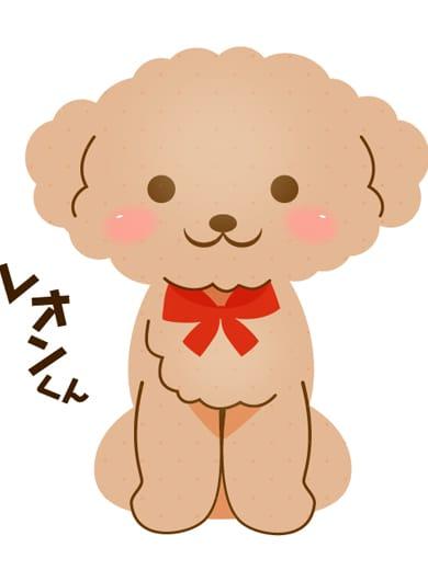 「手を抜きません!」03/17(土) 22:06   LEONくんの写メ・風俗動画
