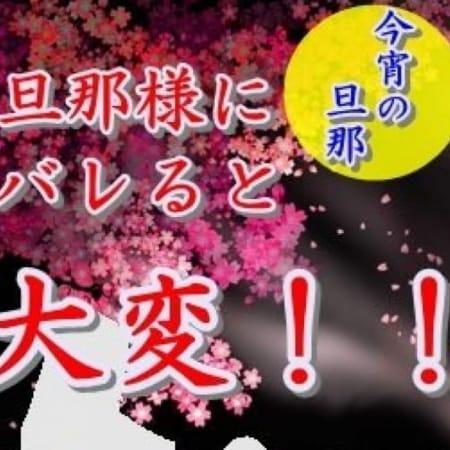 なおみ【マジ惚れ注意!!!】   博多人妻デリヘル 今宵の旦那(福岡市・博多)