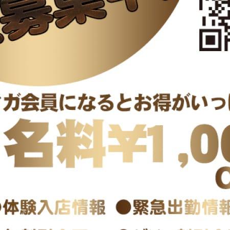 「メルマガ会員様に特典が多数存在!!!」12/16(土) 20:20 | one more 奥様 厚木店のお得なニュース