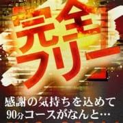 「赤字確定の完全フリー」02/19(火) 17:51 | one more 奥様 厚木店のお得なニュース