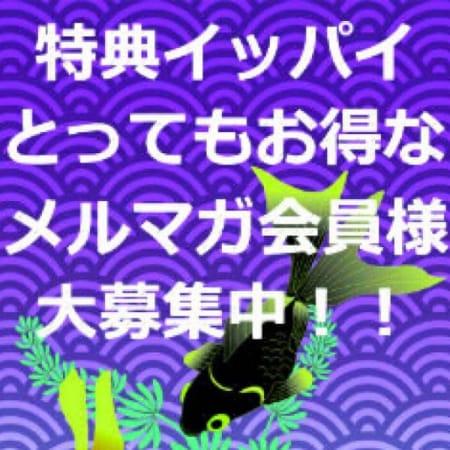 「メルマガ会員様特典♪」11/29(水) 12:07 | 五十路マダム堺店(カサブランカグループ)のお得なニュース