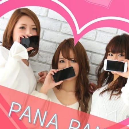 PANA PANAアルバム
