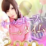「オールコース・オールタイム 2000円OFF!」09/22(土) 09:03   カクテル小倉のお得なニュース