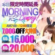 ★モーニングバニー★60分16000円♪|バニーコレクション新潟店