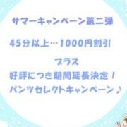 「サマーキャンペーン第二弾」08/21(火) 13:13   パンチラ妄想企画室のお得なニュース