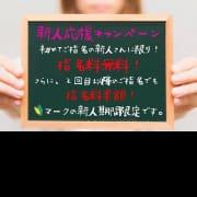 「(^O^)/ 新人さん応援キャンペーン! 4月23日(金曜日)」04/23(金) 11:02 | ハワイのお得なニュース