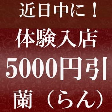 近日中に!体験5000円引!蘭さん♪事前予約受付ます!!|可憐な妻たち 伊勢崎店