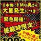 ドMな奥さん日本橋店の速報写真