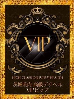 VIP◆ハイレベル専門店◆ | VIP-ビップ- - 水戸風俗