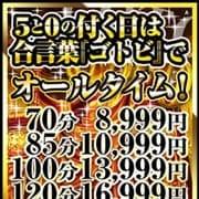 「5日に1度の激安イベント!」01/20(月) 14:09   ギン妻パラダイス京橋店のお得なニュース