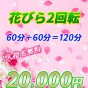 「夢の花びら2回転コース☆」01/23(水) 19:54   金髪外人デリヘル ピンクゴールドのお得なニュース