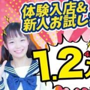 「体験入店・新人お試し割引き」01/10(木) 22:57 | はくじょ学園のお得なニュース