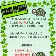 「★グランドオープンイベント★」10/07(日) 22:48 | もしもし亀よ亀さんよ 名古屋店のお得なニュース