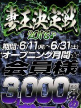 妻王決定戦2000円OFF | 神田人妻城 - 上野・浅草風俗