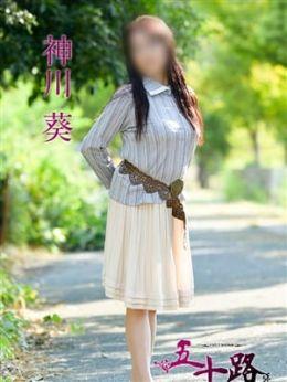 神川葵 | 五十路マダム愛されたい熟女たち 福山店(カサブランカグループ) - 福山風俗