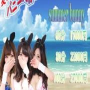 「7月限定イベント『Summer Bunny』開催!」07/20(金) 17:15 | バニーコレクション金津園のお得なニュース