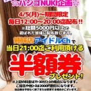 「ハシゴ券」04/04(日) 13:53   アイドルポケットのお得なニュース