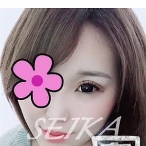 美琴せいか(60分9千円)|名古屋 - 名古屋風俗