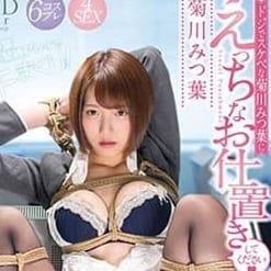 a・bitch+ ~アビッチプラス~ - 新潟・新発田派遣型風俗