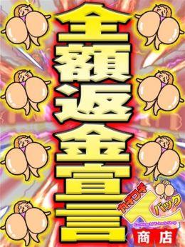 【完全返金宣言】 | カチコチTバック商店 - 宇都宮風俗