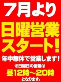 日曜営業スタート! | しろパラ+ - 新橋・汐留風俗
