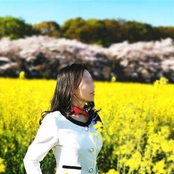 ツバキ | 東京築地★出張マッサージ委員会 - 新橋・汐留風俗