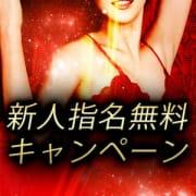 「◆◇◆新人指名無料キャンペーン実施中◆◇◆」09/15(火) 18:19 | PLATINUM LADYのお得なニュース