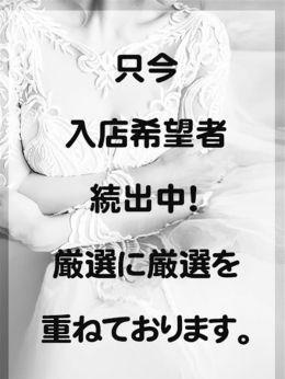厳選中   ミセスプレミアム - 谷九風俗