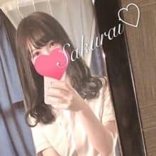 桜井 -Sakurai-