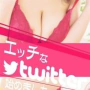 「■Twitter女の子個人アカウント」11/27(金) 22:54 | 厳選美女専門デリバリー STELLA TOKYOのお得なニュース